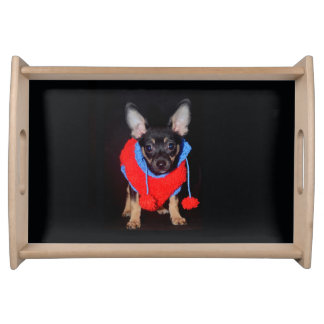 Puppy Wearing Wooly Sweater Serving Tray
