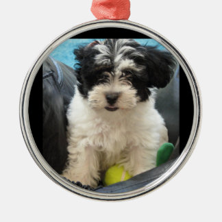Puppy with Tennis Ball  Rescue Metal Ornament