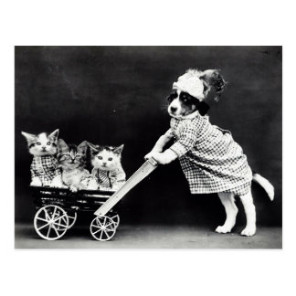 Puppy with Three Kittens in a Carriage Postcard