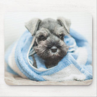 Puppy wraps with towel. mouse pad