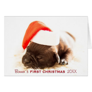 Puppy's First Christmas Photo Year Card