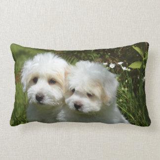 Puppys Lumbar Pillow