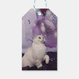 PUR-polarize XMAS Cat Gift Tags