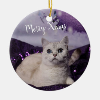 PUR-polarize XMAS Cats Ceramic Ornament
