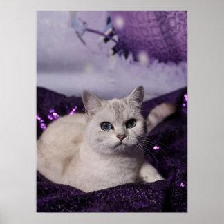PUR-polarize XMAS Cats Poster