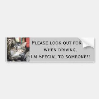 Purdy kitten Bumper Sticker