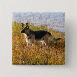 Pure Bred German Shepherd Photo on Button