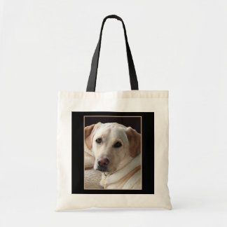 Pure Bred Yellow Lab Dog Photo on Bag