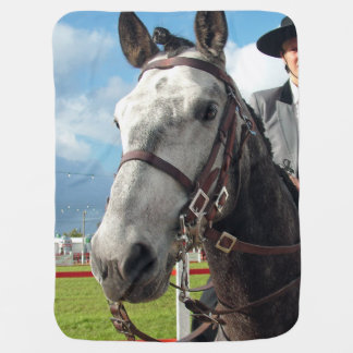 Pure breed horse baby blanket