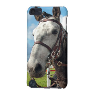 Pure breed horse iPod touch (5th generation) cases