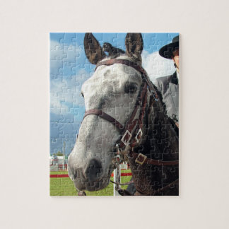 Pure breed horse jigsaw puzzle