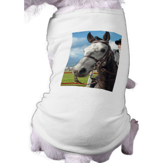 Pure breed horse shirt
