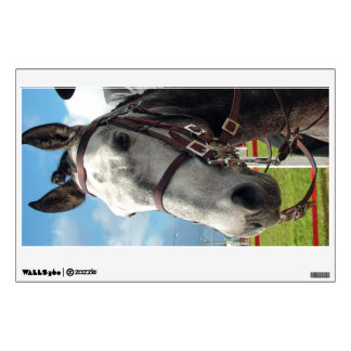 Pure breed horse wall decal