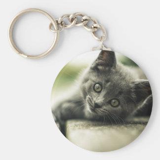 Pure Gray Kitten Keychain