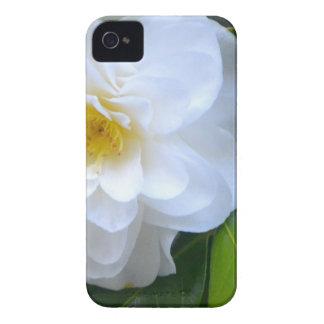 Pure iPhone 4 Case-Mate Cases