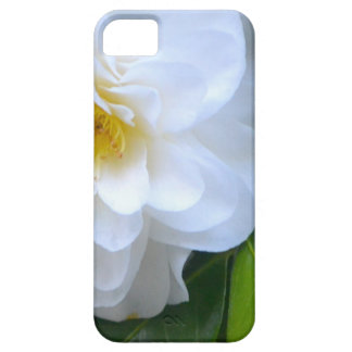 Pure iPhone 5 Cases