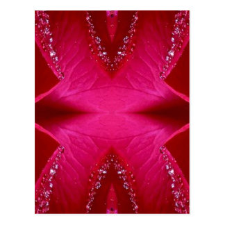 Pure Rose Petal Art - Blood Red n PinkRose Postcard