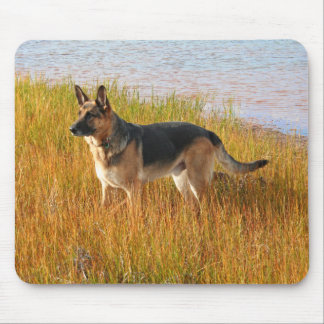 Purebred German Shepherd Mousepad