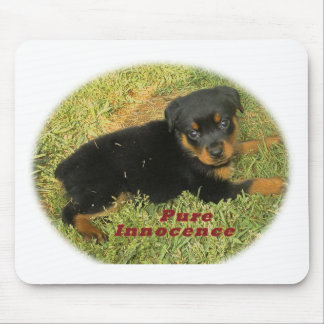 pureinnocence rottweiler puppy mouse pad