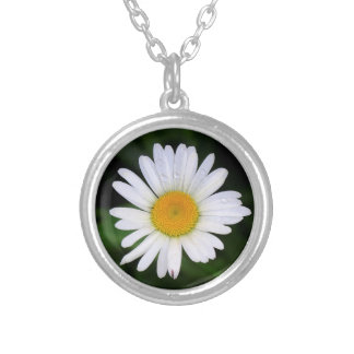 Purity of the daisy silver plated necklace