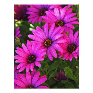 Purple African Daisy Personalized Letterhead