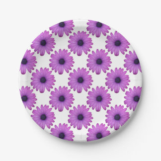 Purple African Daisy with Raindrops Isolated 7 Inch Paper Plate