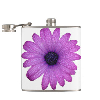Purple African Daisy with Raindrops Isolated Hip Flask