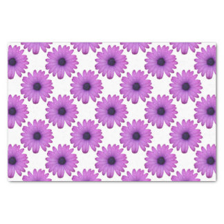 Purple African Daisy with Raindrops Isolated Tissue Paper