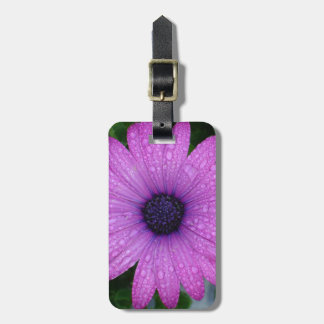 Purple African Daisy with Raindrops Luggage Tag