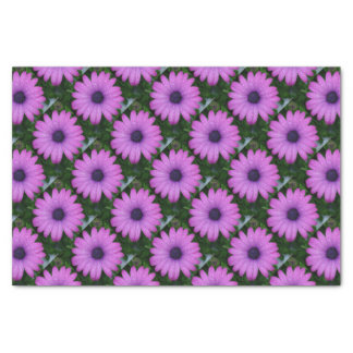 Purple African Daisy with Raindrops Tissue Paper