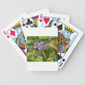 Purple Ageratum Wildflowers Bicycle Playing Cards