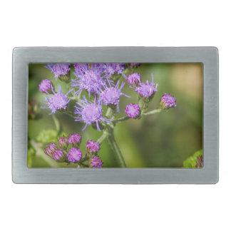 Purple Ageratum Wildflowers Rectangular Belt Buckle