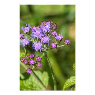 Purple Ageratum Wildflowers Stationery