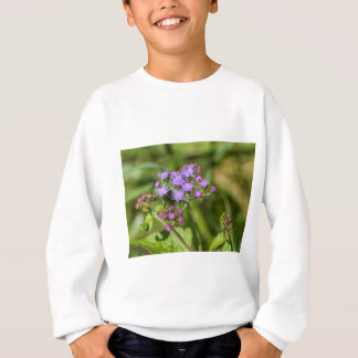 Purple Ageratum Wildflowers Sweatshirt