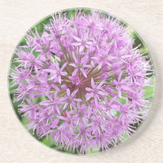 Purple Allium Coaster