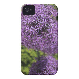 Purple Allium iPhone 4 Covers
