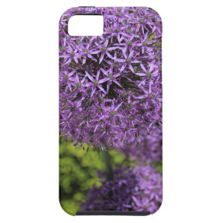 Purple Allium iPhone 5 Cover