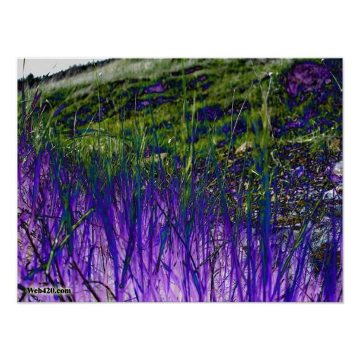 purple and green grass poster