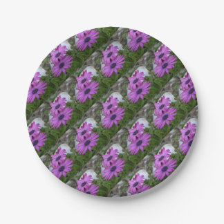 Purple and Pink African Daisy Flowers 7 Inch Paper Plate