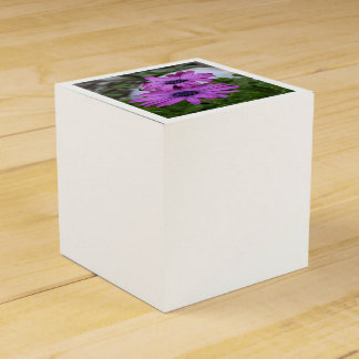 Purple and Pink African Daisy Flowers Favor Box