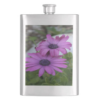 Purple and Pink African Daisy Flowers Hip Flask