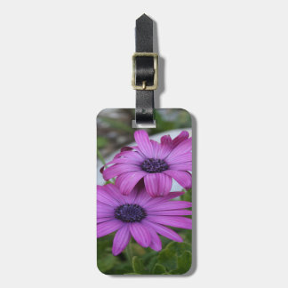 Purple and Pink African Daisy Flowers Luggage Tag