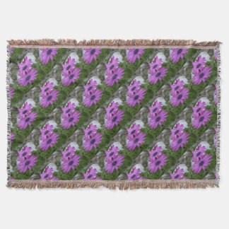 Purple and Pink African Daisy Flowers Throw Blanket
