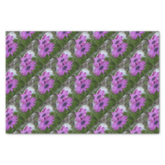 Purple and Pink African Daisy Flowers Tissue Paper