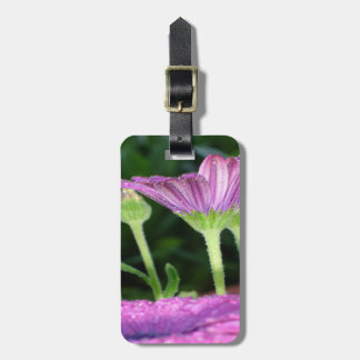 Purple And Pink Daisy Flower in Full Bloom Bag Tag