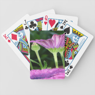 Purple And Pink Daisy Flower in Full Bloom Bicycle Playing Cards