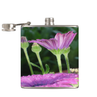 Purple And Pink Daisy Flower in Full Bloom Hip Flask