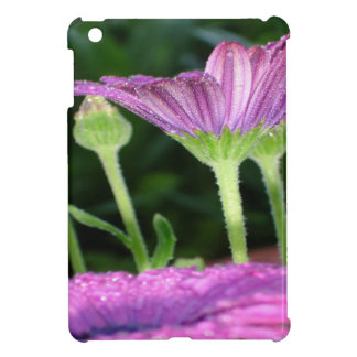 Purple And Pink Daisy Flower in Full Bloom iPad Mini Cover