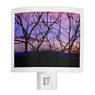 Purple and Pink Sunset Through Tree Silhouette Night Light