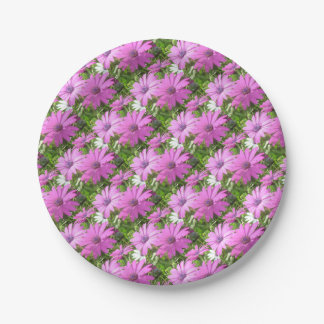 Purple And Pink Tropical Daisy Flower 7 Inch Paper Plate
